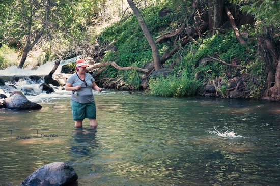 oak creek brown picture of sedona fly fishing adventures