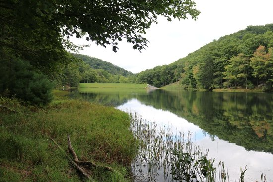 Watoga State Park: Lake view from the lower path we hiked