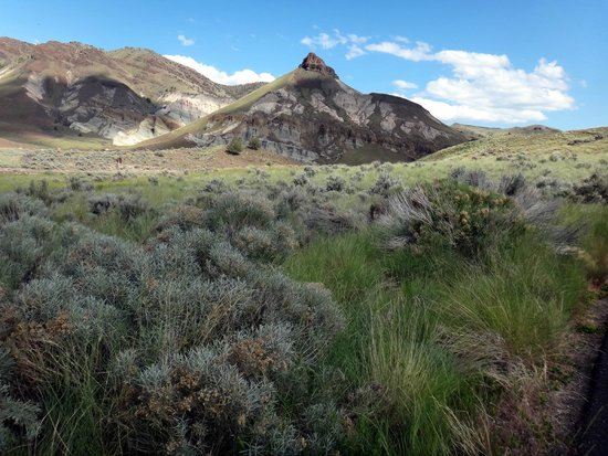 John Day Fossil Beds Hotels