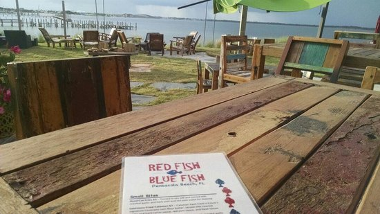 Great atmosphere picture of red fish blue fish for Red fish catering