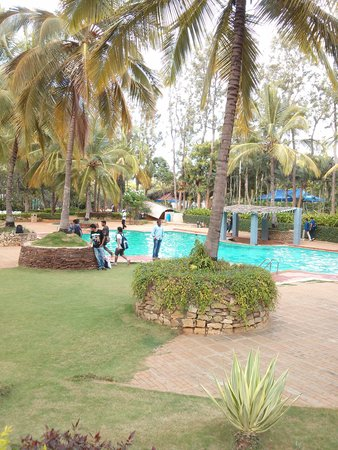 Swimming Pool Picture Of The Windflower Prakruthi