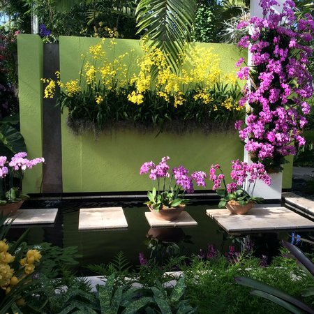 2014 Orchid Show Key West Contemporary Picture Of New York Botanical Garden Bronx Tripadvisor