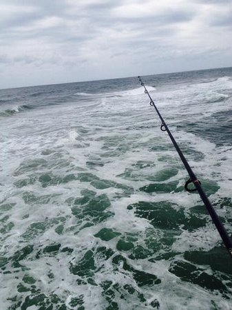 Not much out there but still a good day picture of for Jolly roger pier fishing report