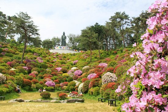 Ome, Japan: Giant Kannon Statue overlooking the garden from hill top