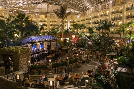 The Falls And The Cascades Atrium Picture Of Gaylord Opryland Resort Convention Center