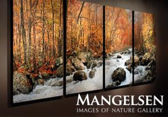 Images Of Nature Mangelsen Thomas D Mangelsen s Images