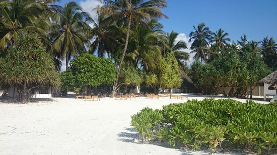 Photo of Mchanga Beach Lodge Zanzibar