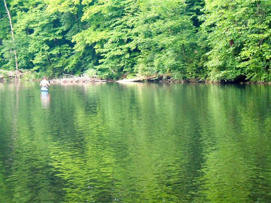 Fishing on the little juniata picture of spruce creek for Fishing creek pa