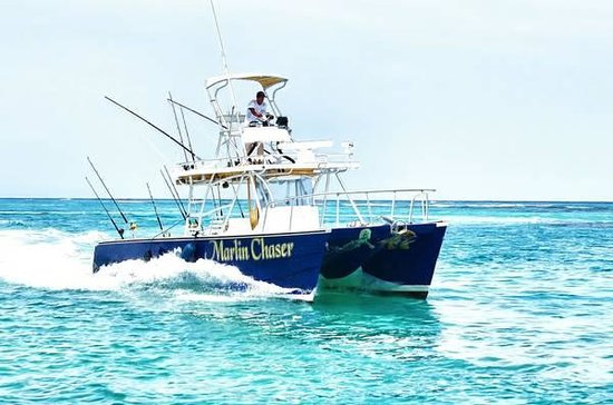 The Marlin Chaser