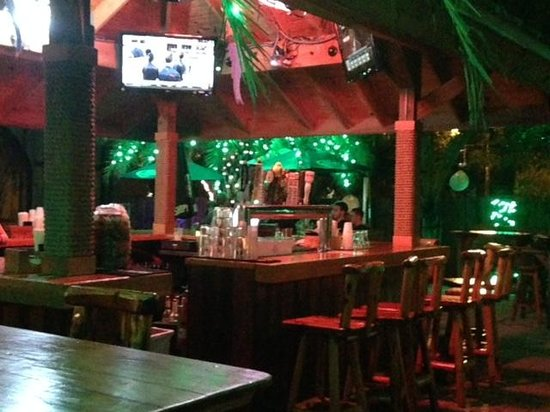 backyard appears dead review of the backyard boynton beach fl