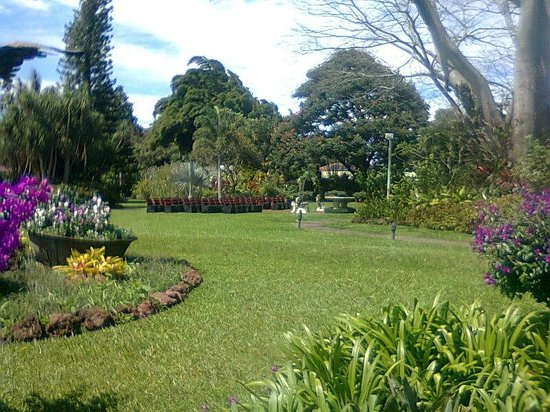 Santo domingo de heredia photos featured images of santo - Jardines costa rica ...