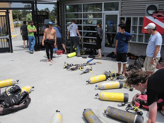 Harbor Dive Center, One-Day Classes