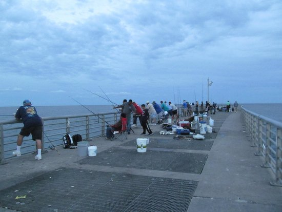 Fishermen fill the pier but hauled in a steady catch for Fishing in sebastian fl