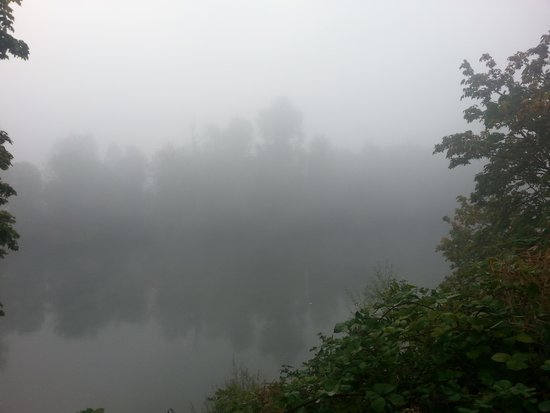 Rodeway Inn Willamette River: Early morning view of the river