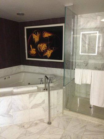 MGM Grand Celebrity Spa Suites - Las Vegas Forum