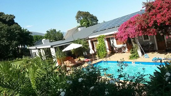 Marula Lodge Guesthouse: Blick vom Zimmer