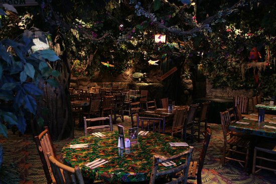 Rainforest Cafe Chicago Reviews
