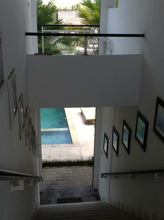 Premier Surf Camp: View downstairs