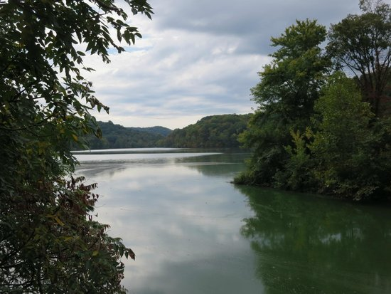 Radnor Lake State Park: It was beautiful even though the water was quite low