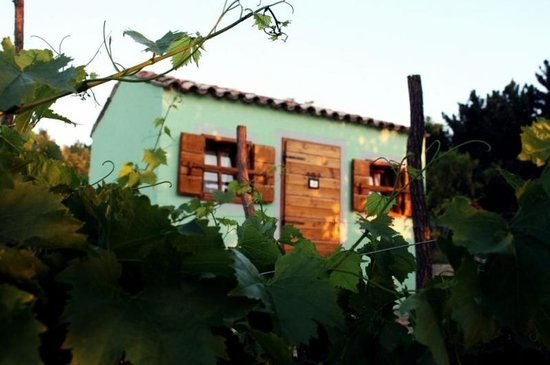 Holiday Houses in Slovenian Istria