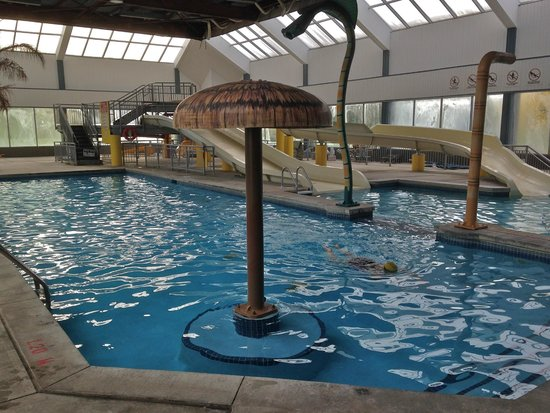 Indoor Swimming Pool Picture Of Pelee Motor Inn