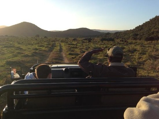 Kariega River Lodge: My Son a & LV on the Road