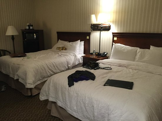 Hampton Inn Carlstadt-At The Meadowlands: Room