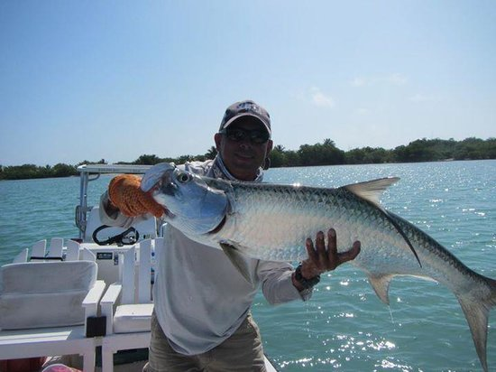My first tarpon amazing fish to land for Chasing tails fishing report