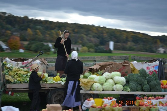 Fresh vegetables etc for Amish country things to do