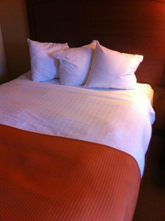 AmericInn Lodge & Suites Fargo West Acres: Mini Pillows?!?!
