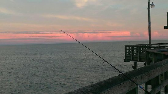 Waiting for a bite picture of cherry grove pier north for Myrtle beach pier fishing report