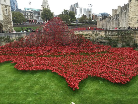 Tower of London Poppies Field Tower of London The Poppy