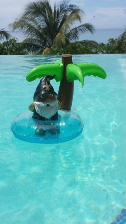 Mayoka Boutique Hotel: NO Saints Gnome - what a life!