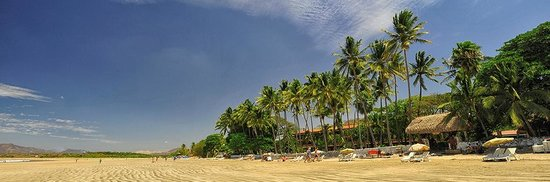 Photo of Hotel Tropicana Tamarindo