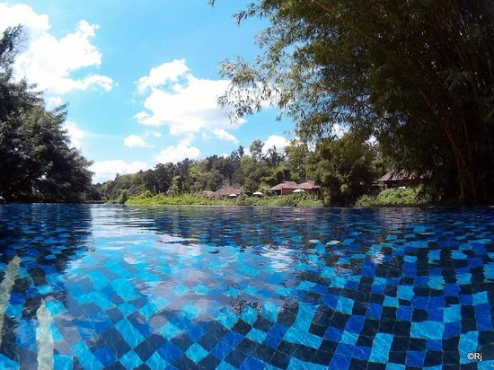Adult pool Hotels in coorg with swimming pool