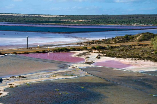 Pink salt lake lookout picture of port gregory beach for Lake gregory fishing report