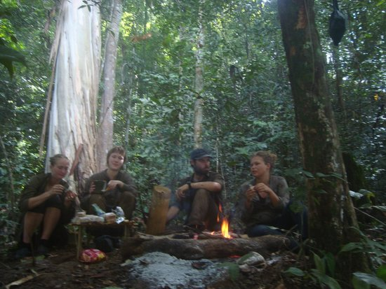 Jungle survival camp malaysia airlines