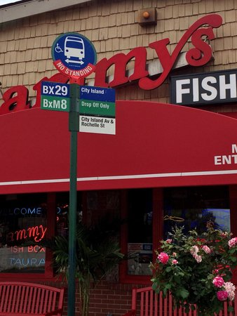The bus stops right at the front door of sammy 39 s fish box for Sammy s fish box