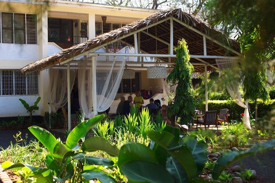 The Hibiscus Bed and Breakfast