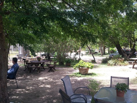 Megalong Valley Tea Rooms Reviews