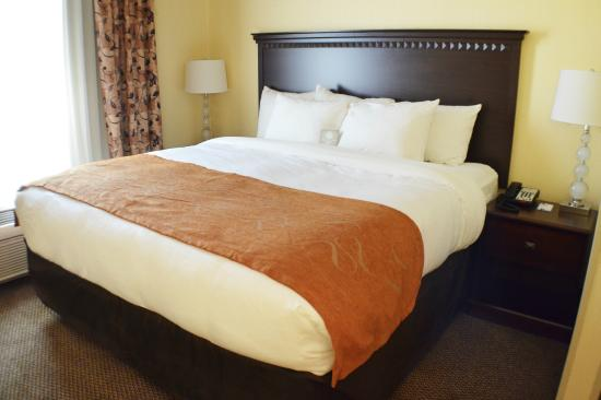 Comfort Suites Southington - Cheshire