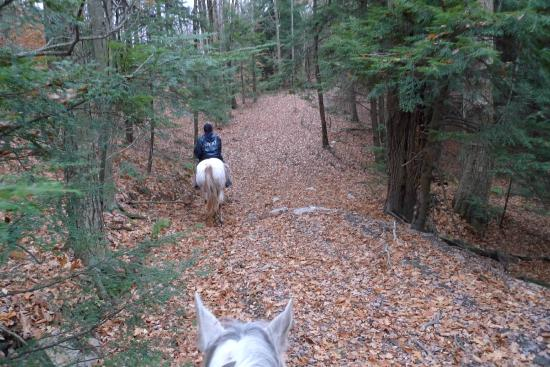 Harmony Trails - Private Tours