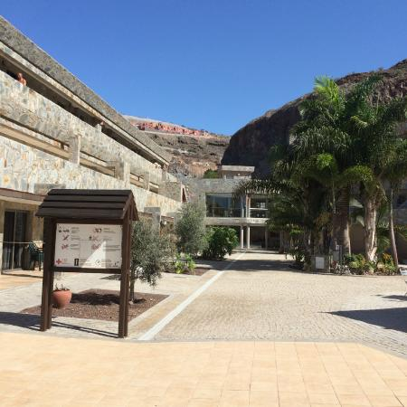 Hotel Terraza Amadores Picture