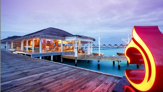 ‪Centara Grand Island Resort & Spa Maldives‬