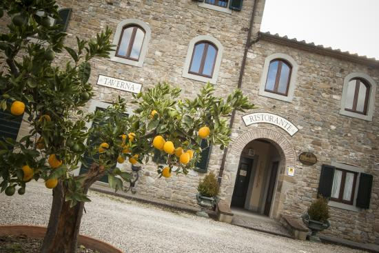Photo of Borgo il Melone Cortona
