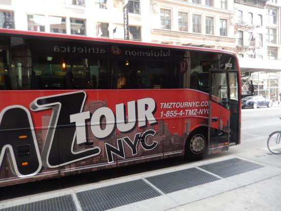 Tmz cupcakes provided by the tour they were delicious for Tmz tour new york city