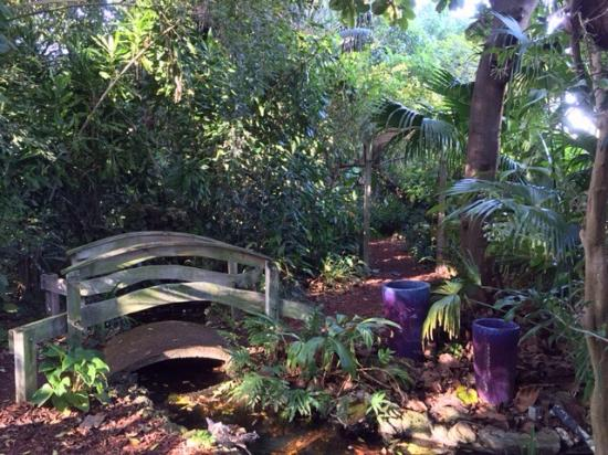 Hideaway Picture Of Mounts Botanical Garden West Palm