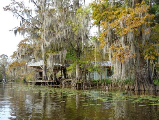 Abandoned fishing camp picture of louisiana lost lands for Louisiana fishing camps
