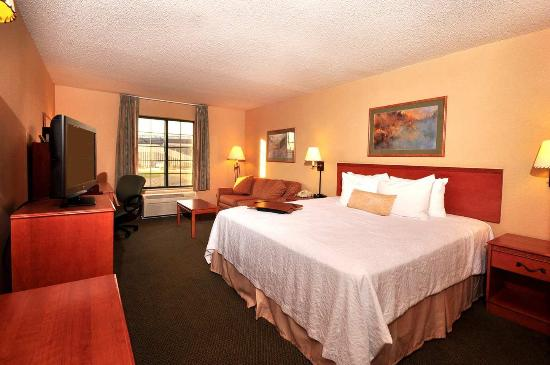 Hampton Inn Kansas City / Village West