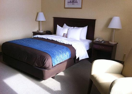 Comfort Inn Mercer